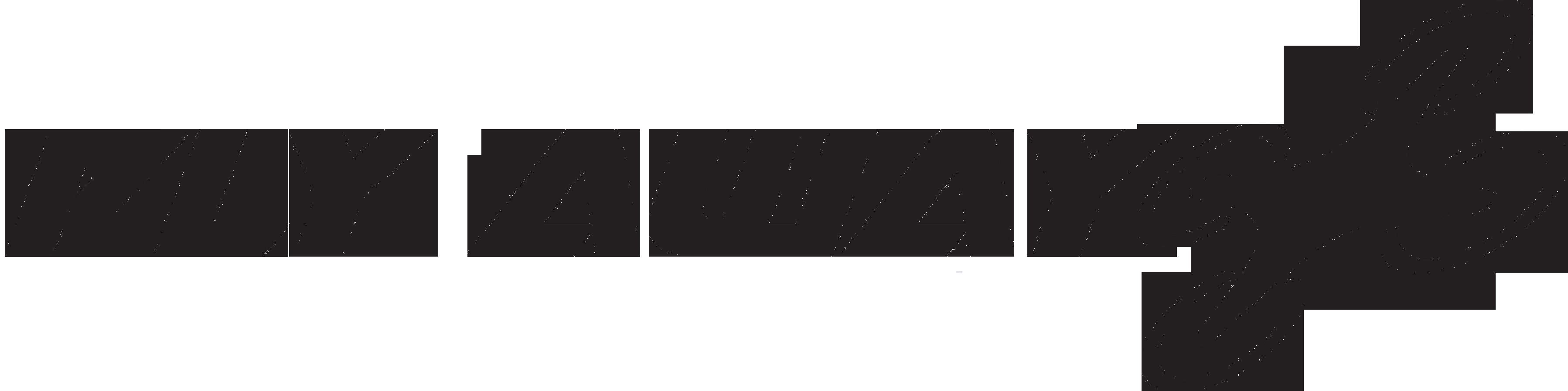 Logo FLY AWAY PLUS Cezary Dobrzyński