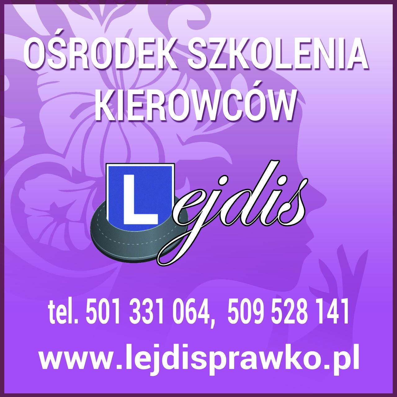 Logo Ośrodek Szkolenia Kierowców Lejdis sc Zofia Banaś Ewelina Ogonek