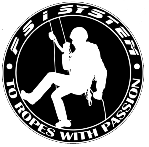 Logo PSI SYSTEM SPÓŁKA Z OGRANICZONĄ ODPOWIEDZIALNOŚCIĄ