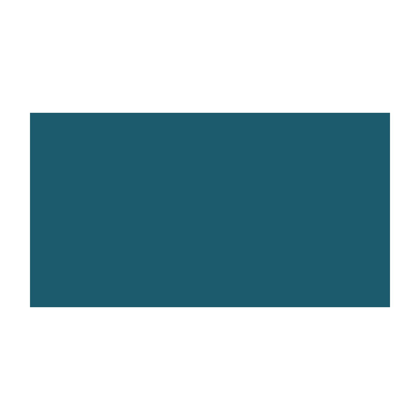 Logo Premiumads Maciej Wiśniewski